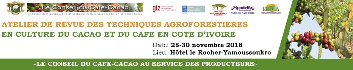LE CONSEIL DU CAFE-CACAO ET SES PARTENAIRES TECHNIQUES ORGANISENT UN ATELIER DE REVUE DES TECHNIQUES AGROFORESTIERES EN CULTURE DU CAFE ET DU CACAO EN COTE D'IVOIRE A YAMOUSSOUKRO