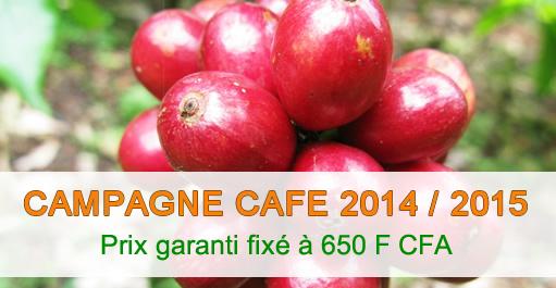 COMMUNIQUE DE PRESSE : Campagne de commercialisation du Cafe 2014-2015